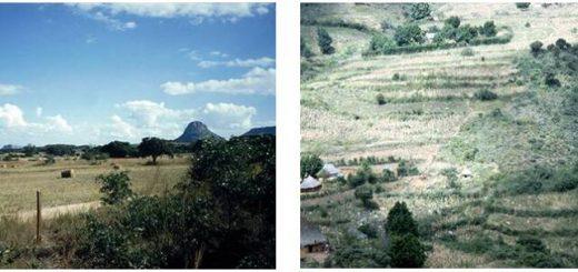 Zimbabwe Agriculture - large farm area
