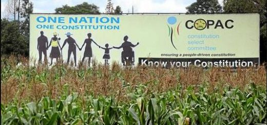 Zimbabwe Poster for the new constitution